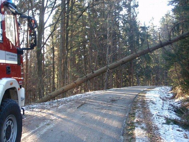 Hasiče včera ráno zaměstnaly pády stromů