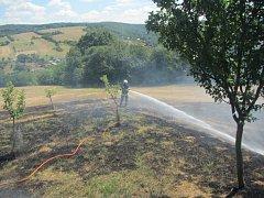 Vypalování trávy se zvrtlo v požár