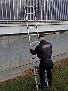 Strážníci ve Zlíně pomohli bezmocné seniorce. Přivolal je soused