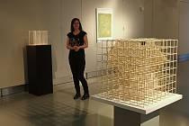 Výstava nabízí kombinaci grafiky a objektů v jednom prostoru.