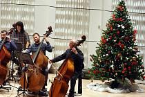 Zkouška filharmonie Bohuslava Martinů na Vánoční koncert.  Dirigent: JAROMÍR M. KRYGEL