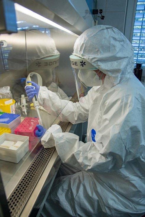 Mikrobiologická laboratoř zlínské nemocnice splnila v březnu přísné podmínky na kvalitu analyzování vzorků a mohla začít s testováním odebraných vzorků na koronavirus.