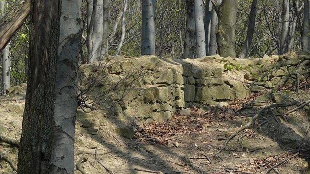 Zřícenina hradu Starý Světlov.