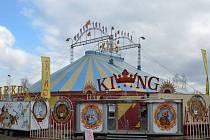 Cirkus Bob Navarro King