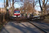 Mohutnou větev museli z cyklostezky odstraňovat hasiči.