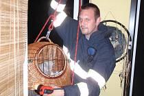 Hasiči zachraňovali malé kotě z balkónu ve Zlíně