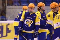 hokejista Dominik Luža