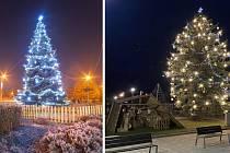 V anketě Deníku o nejkrásnější vánoční strom ve Zlínském kraji zvítězil krasavec z Otrokovic (na snímku vlevo), druhý skončil strom z Bojkovic (vpravo)