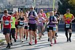 Darujte účast ve Festivalovém půlmaratonu Monet + Zlín
