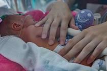 Zástupci Nedoklubka přivezli do Zlína vedle čtyř speciálních pelíšků pro jednotlivá miminka a jednoho pro dvojčata také další dárky pro rodiče novorozenců.