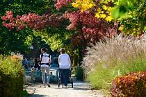 Jedinečnou atmosféru má zahrada v podzimních měsících. Během října je otevřeno od 8.30 do 17.00 hodin. V listopadu pak od 8.30 do 16.00 hodin.