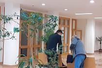 Přísné tresty nad výrobci pervitinu vynesl ve čtvrtek senát krajského soudu ve Zlíně.