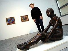 Výstava 100 plus jeden obraz v Krajské galerii výtvarného umění ve Zlíně.