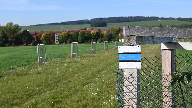 Městu Slavičín se podařilo přeložit vedení turistické trasy z nebezpečného silničního úseku. Nově ji budou lemovat ovocné stromy a povede otevřenou krajinou.