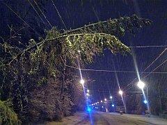 Celonoční vydatné sněžení, které v noci ze čtvrtka 28. na pátek 29. prosince 2017 zasáhlo východ Moravy, komplikovalo silniční provoz a pod tíhou mokrého sněhu padaly celé stromy nebo jejich části.