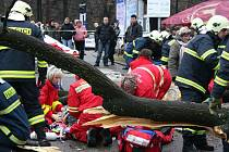 Vzrostlý strom zavalil několik lidí včetně malých dětí.
