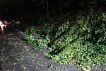 Následky bouřky ve Zlínském kraji, 28.7.2020