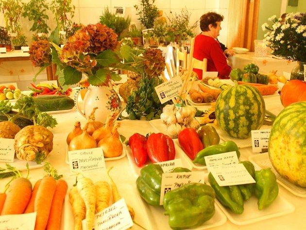 Výstava ovoce a zeleniny. Ilustrační foto
