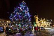 Vánoční strom Napajedla