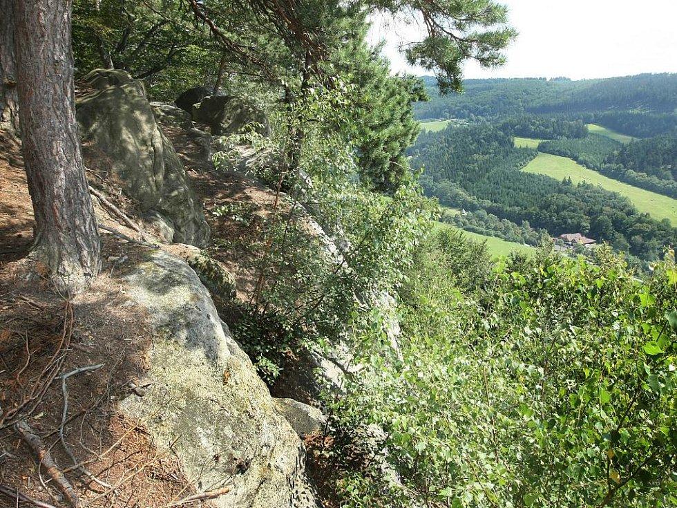 Pohled z vrcholu skalní stěny nad Držkovou