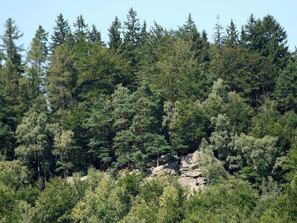 Vrchol skalní stěny nad Držkovou