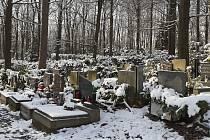 Lesní hřbitov ve Zlíně pokryl sníh.