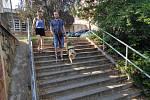 Ani sejít ze schodů není pro nevidomého se psem problém