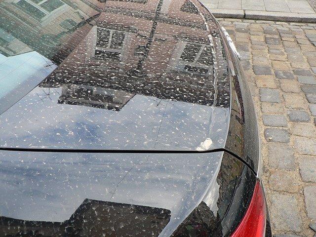 Písek ze Sahary na kapotě auta