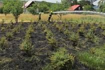 Požár v lesní školce v Malenovicích