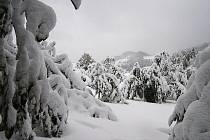 Sněhová kalamita v Držkové.
