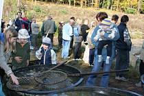 Tradiční výlov prostředního ze tří rybníků v lokalitě Zbožensko ve Zlíně.