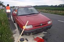 Srážku s osobním vozem divočák nepřežil.