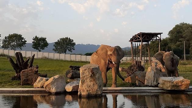 Lidé na sbírkové konto Zoo Zlín poslali téměř 200000 Kč, zahrada část peněz využila pro výstavbu přístřešku v novém výběhu slonů