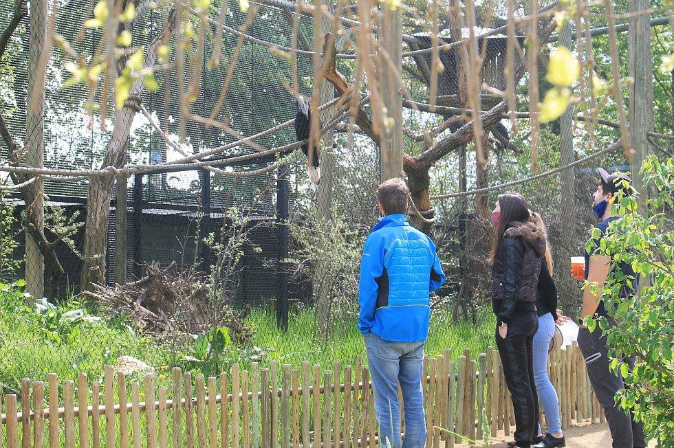 Zoo Zlín. Ilustrační foto