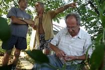 Zahrádkáři se učili řezat a množit ovocné stromy pod vedením pěstitele Františka Němečka (vpravo).