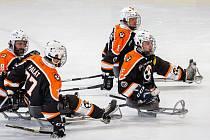 Sledge hokejisté Zlína. Ilustrační foto
