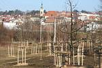 Přírodní park Škrlovec na okraji sídliště Olšava.