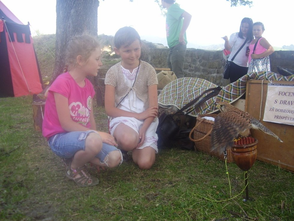 Děti na hradě Brumov obdivují dravé ptáky.