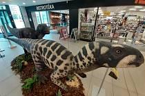 Dinosauři lákají na unikátní výstavu obrazů Zdeňka Buriana v Obchodňáku.