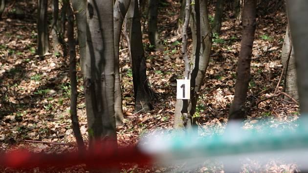 Policisté se psy prohledávají místo nálezu kostry člověka.