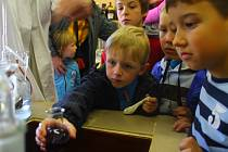 V sobotu 5. října 2013 se v budově U1 – Fakulta technologická konala akce Pokusy na dětech. Děti si mohly zkusit efektní pokusy bez rizika či si stoupnout za kameru. Své rodiče děti také mohly odložit na výstavě o řasách.