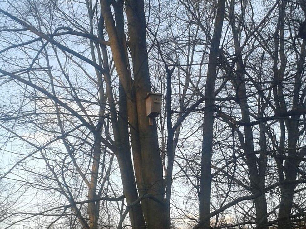 Vyrobené a pověšené naše budky v lese, Velký Ořechov