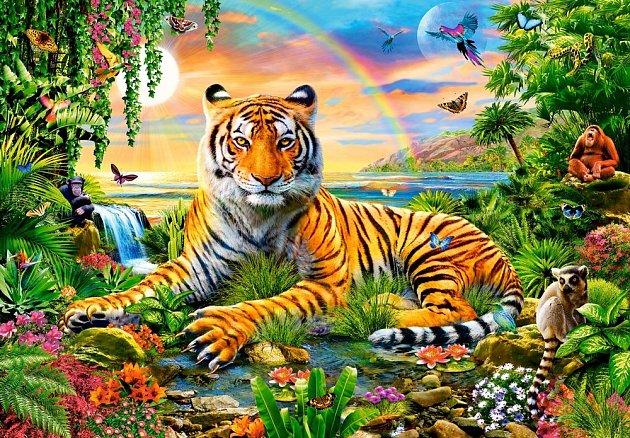 Král džungle.