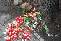Místo tragédie, kde padající strom v lednu smrtelně zranil dva chlapce.