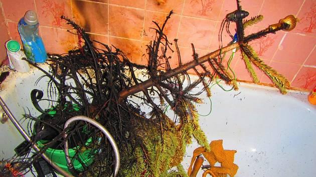 Hořící vánoční stromek uhasila obyvatelka bytu před příjezdem jednotek. Při hašení byla popálena na rukou.