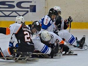 Sledge hokej. Ilustrační foto