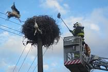 Čáp uvízlý v drátech vedení v Napajedlích zaměstnal hasiče z Otrokovic