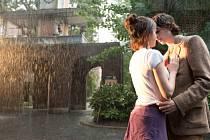 Film Deštivý den v New Yorku.