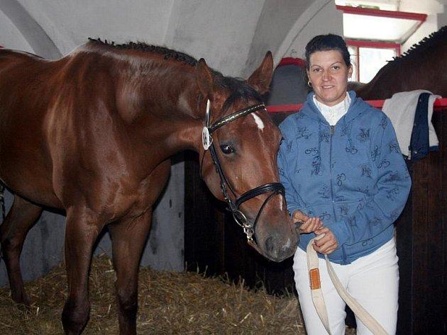 Výstava koní v Tlumačově
