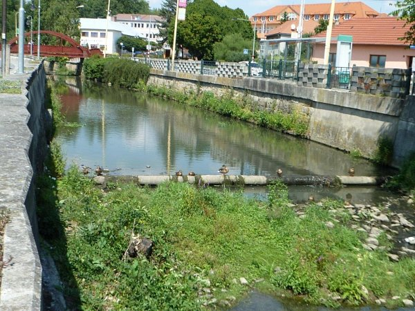 Řeka, Slavičín, sucho